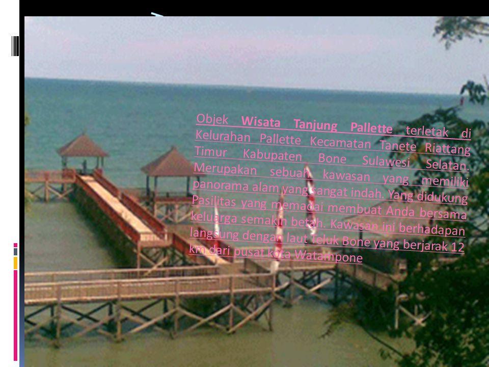 TANJUNG PALLETTE Objek Wisata Tanjung Pallette terletak di Kelurahan Pallette Kecamatan Tanete Riattang Timur Kabupaten Bone Sulawesi Selatan. Merupak
