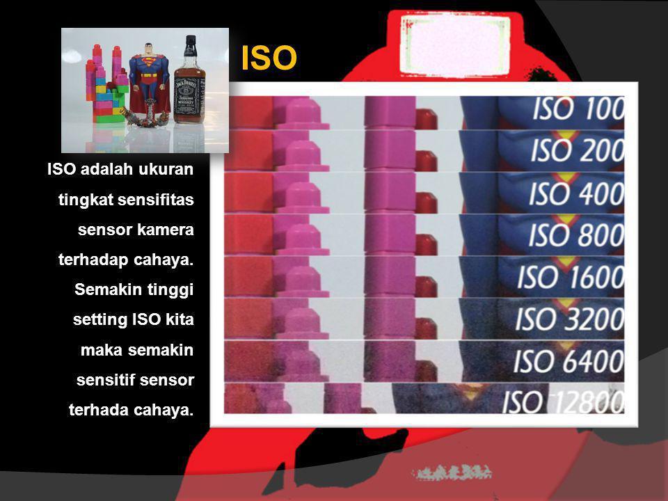 ISO ISO adalah ukuran tingkat sensifitas sensor kamera terhadap cahaya. Semakin tinggi setting ISO kita maka semakin sensitif sensor terhada cahaya.