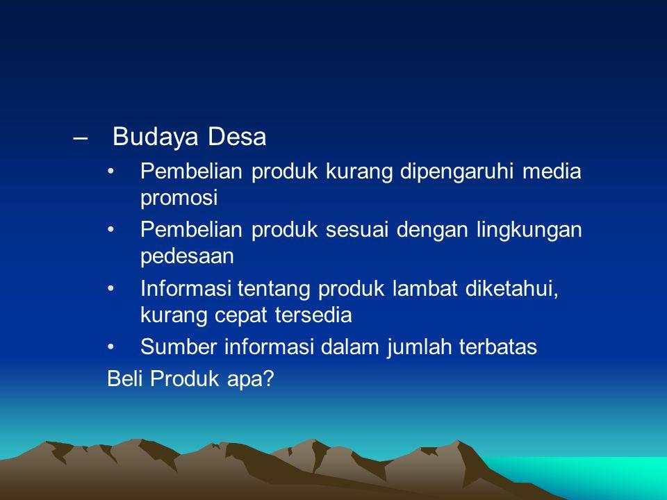 –Budaya Desa •Pembelian produk kurang dipengaruhi media promosi •Pembelian produk sesuai dengan lingkungan pedesaan •Informasi tentang produk lambat d