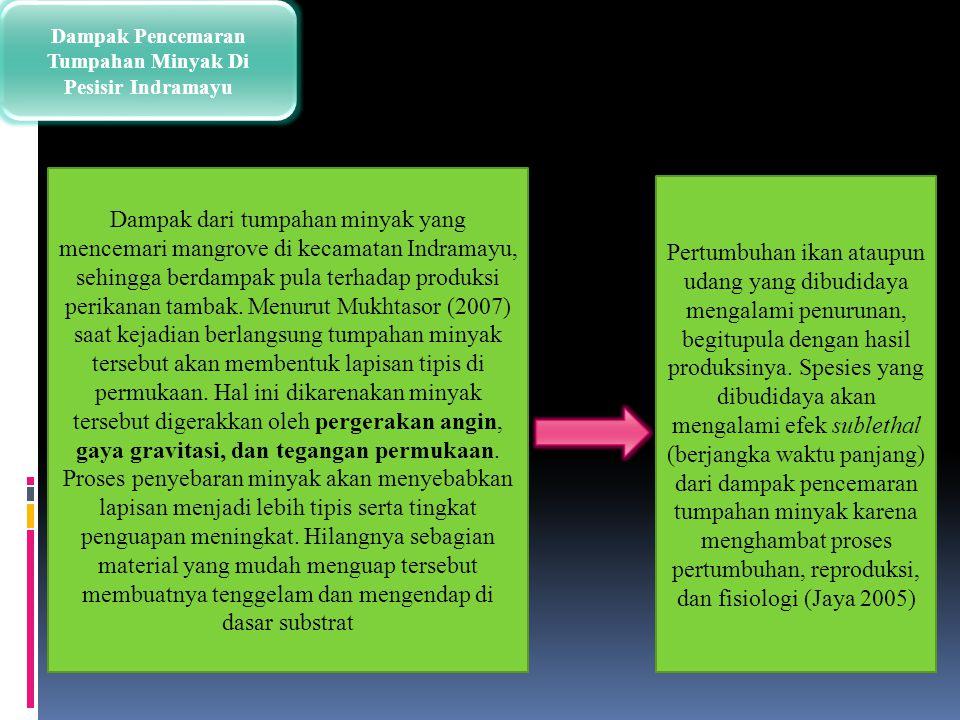 Dampak Pencemaran Tumpahan Minyak Di Pesisir Indramayu Dampak dari tumpahan minyak yang mencemari mangrove di kecamatan Indramayu, sehingga berdampak