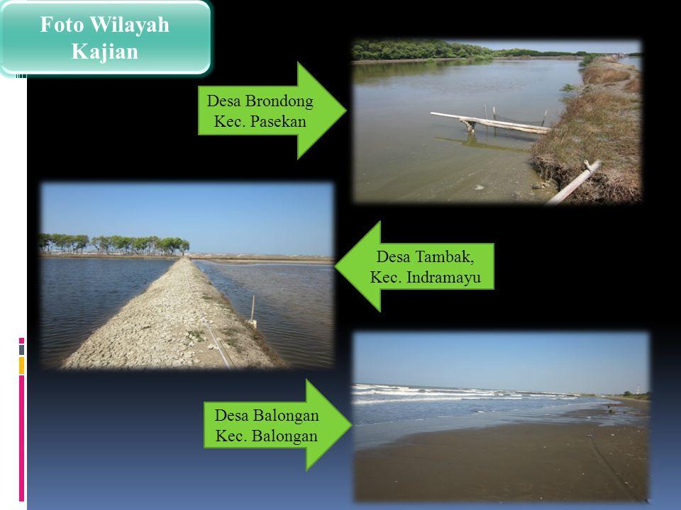 Foto Wilayah Kajian Desa Tambak, Kec. Indramayu Desa Brondong Kec. Pasekan Desa Balongan Kec. Balongan