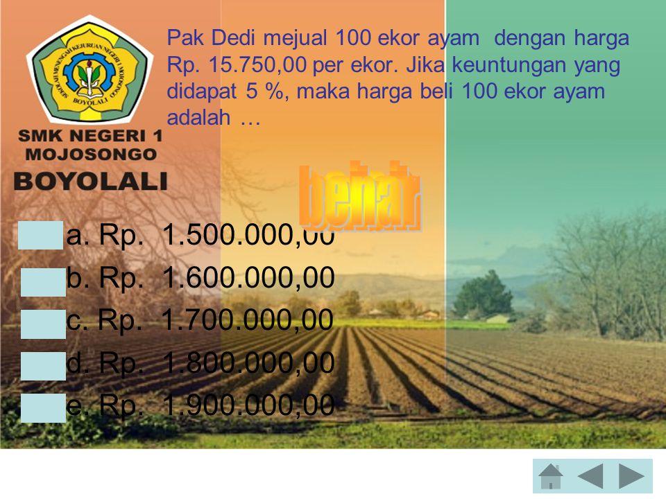 Pak Dedi mejual 100 ekor ayam dengan harga Rp.15.750,00 per ekor.