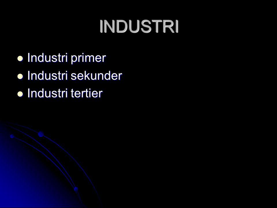 INDUSTRI  Industri primer  Industri sekunder  Industri tertier