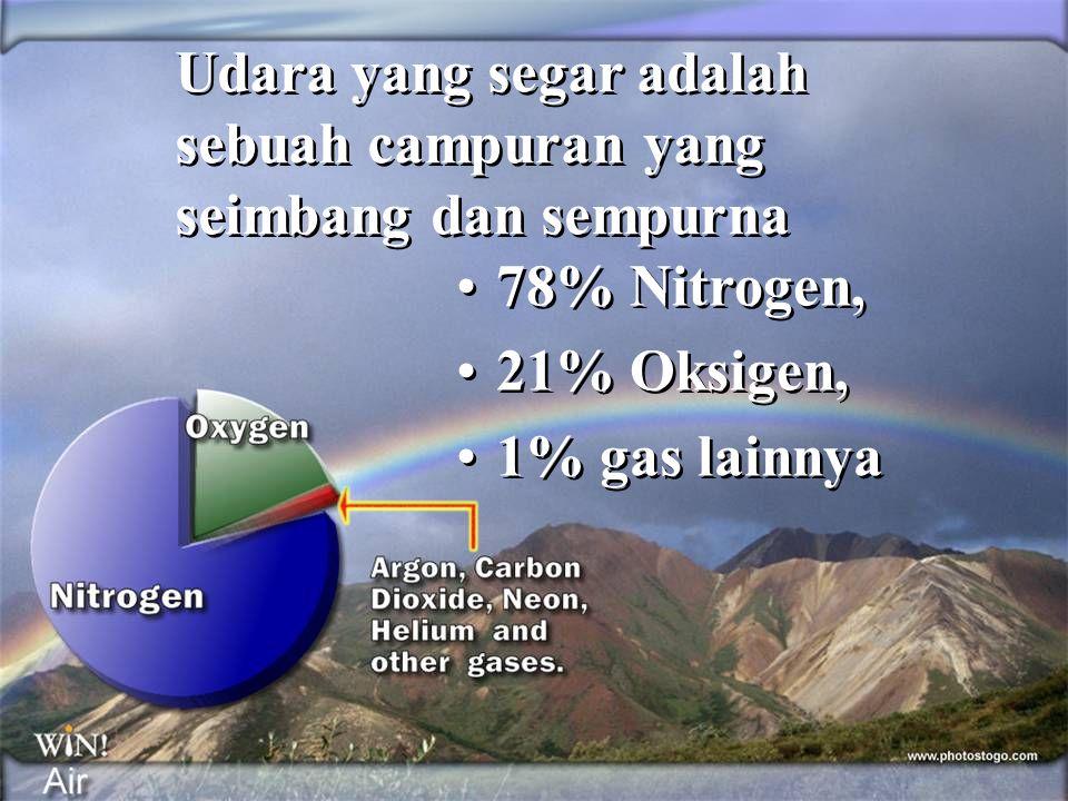 •78% Nitrogen, •21% Oksigen, •1% gas lainnya •78% Nitrogen, •21% Oksigen, •1% gas lainnya Udara yang segar adalah sebuah campuran yang seimbang dan se