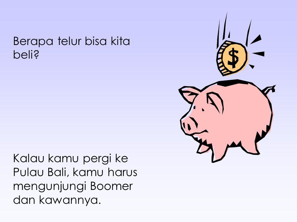 Berapa telur bisa kita beli? Kalau kamu pergi ke Pulau Bali, kamu harus mengunjungi Boomer dan kawannya.