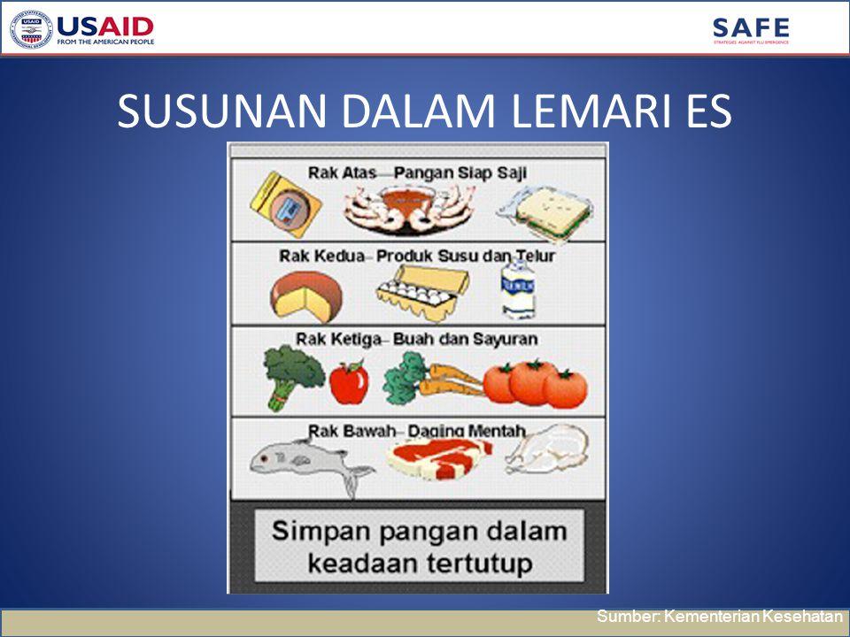 SUSUNAN DALAM LEMARI ES Sumber: Kementerian Kesehatan