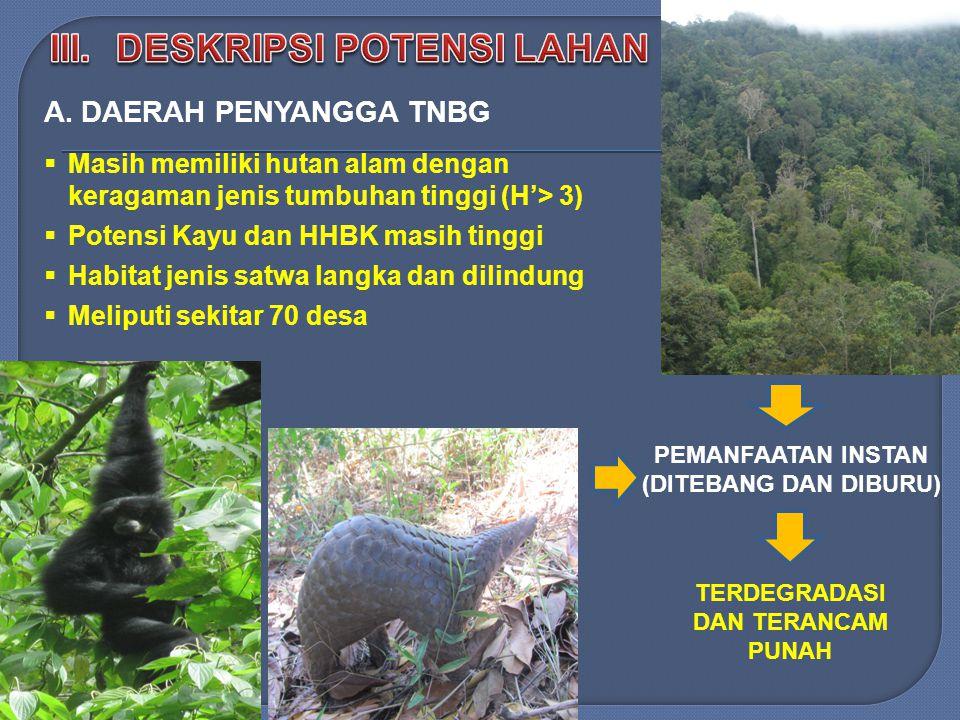  Masih memiliki hutan alam dengan keragaman jenis tumbuhan tinggi (H'> 3)  Potensi Kayu dan HHBK masih tinggi  Habitat jenis satwa langka dan dilindung  Meliputi sekitar 70 desa A.