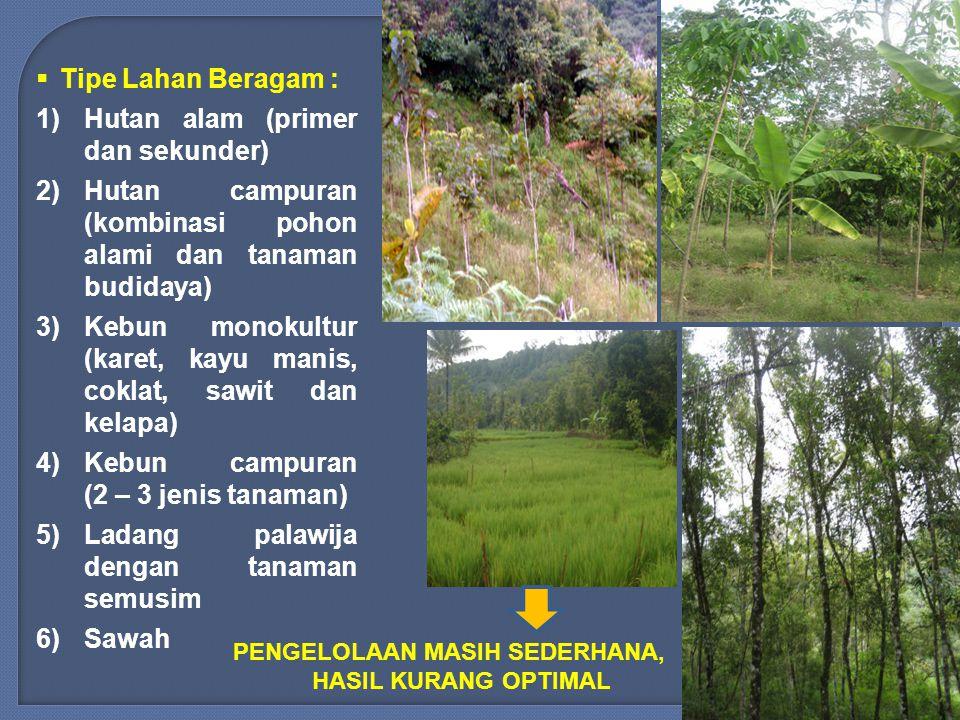 1.Sekitar 34 % lahan terbuka (alang-alang dan penggembalaan).