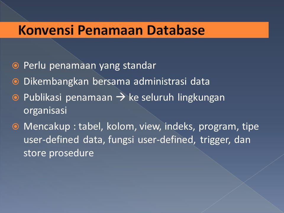  Perlu penamaan yang standar  Dikembangkan bersama administrasi data  Publikasi penamaan  ke seluruh lingkungan organisasi  Mencakup : tabel, kol