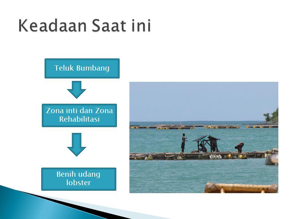 Zona inti dan Zona Rehabilitasi Benih udang lobster Teluk Bumbang