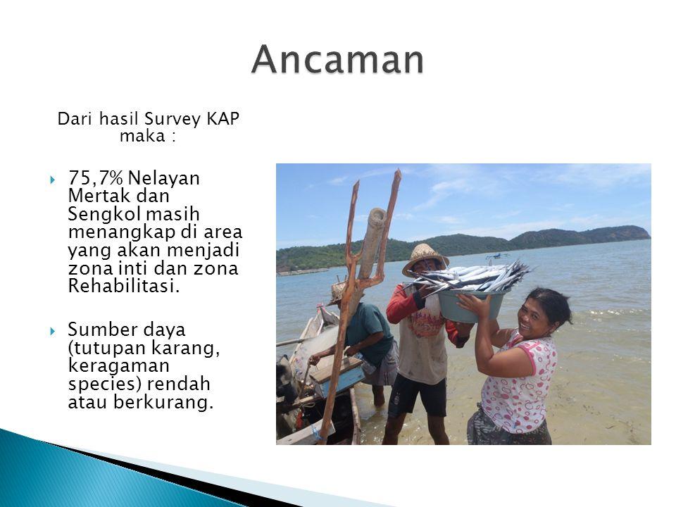Dari hasil Survey KAP maka :  75,7% Nelayan Mertak dan Sengkol masih menangkap di area yang akan menjadi zona inti dan zona Rehabilitasi.  Sumber da