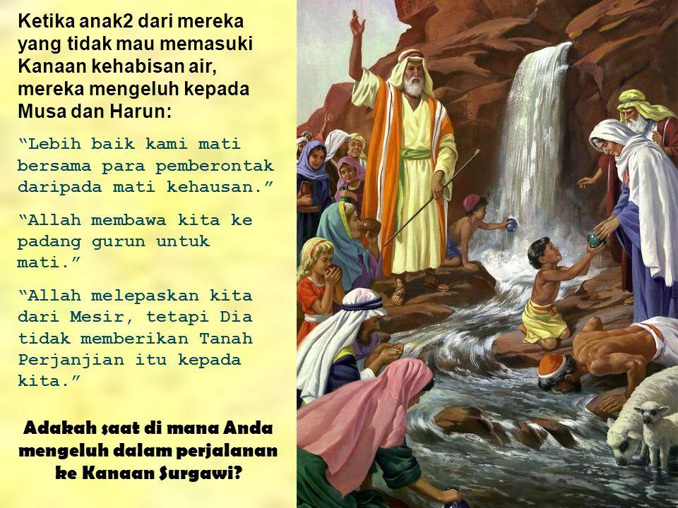 """Ketika anak2 dari mereka yang tidak mau memasuki Kanaan kehabisan air, mereka mengeluh kepada Musa dan Harun: """"Lebih baik kami mati bersama para pembe"""