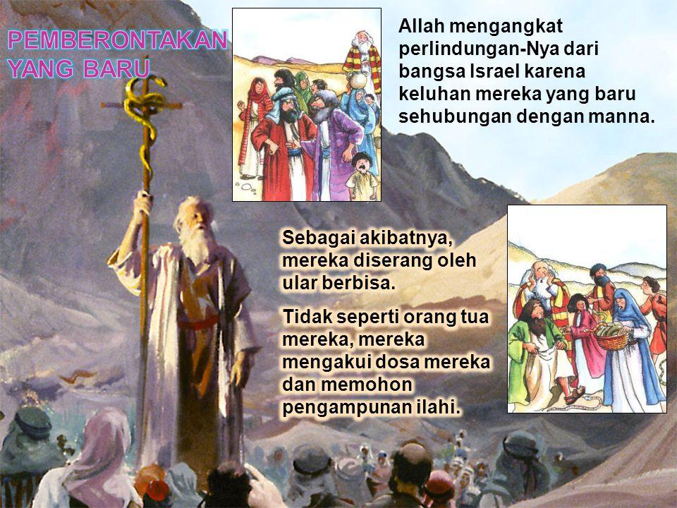 Allah mengangkat perlindungan-Nya dari bangsa Israel karena keluhan mereka yang baru sehubungan dengan manna.