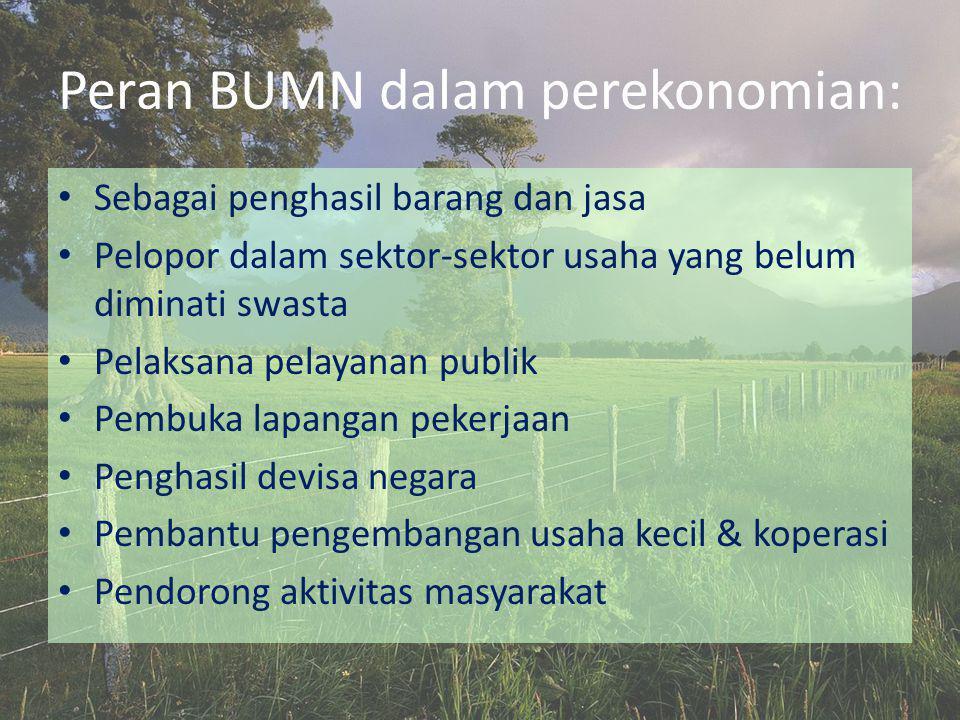 Peran BUMN dalam perekonomian: • Sebagai penghasil barang dan jasa • Pelopor dalam sektor-sektor usaha yang belum diminati swasta • Pelaksana pelayana