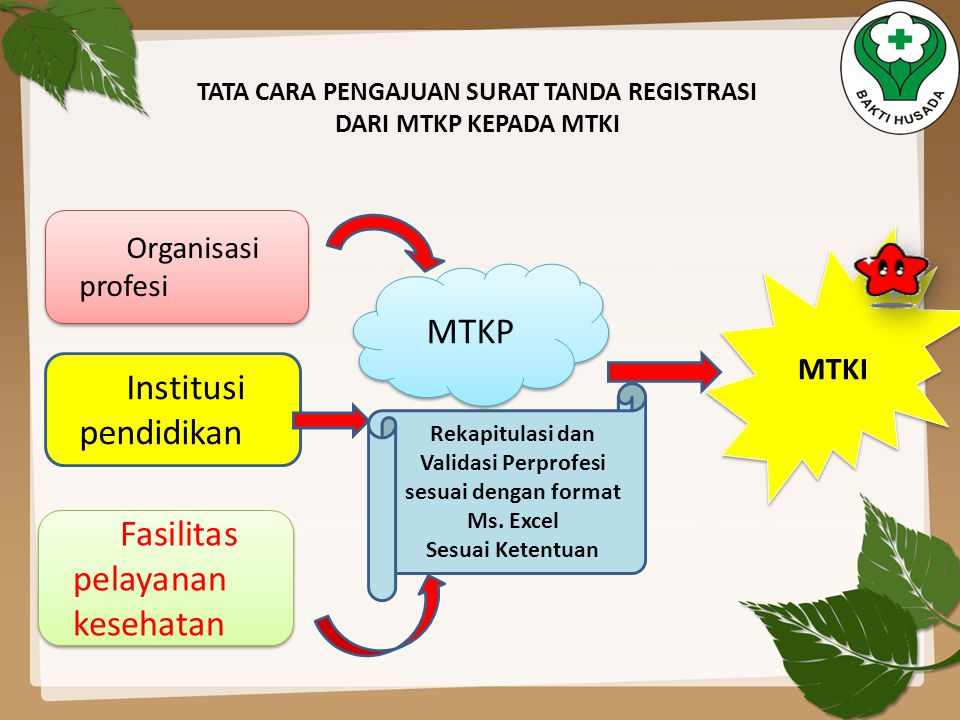 Organisasi profesi Institusi pendidikan Fasilitas pelayanan kesehatan MTKP MTKI Rekapitulasi dan Validasi Perprofesi sesuai dengan format Ms. Excel Se