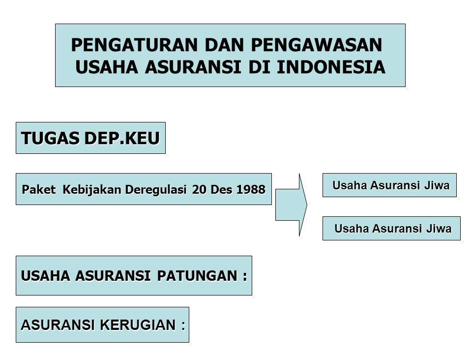 PENGATURAN DAN PENGAWASAN USAHA ASURANSI DI INDONESIA TUGAS DEP.KEU Paket Kebijakan Deregulasi 20 Des 1988 Usaha Asuransi Jiwa Usaha Asuransi Jiwa USA