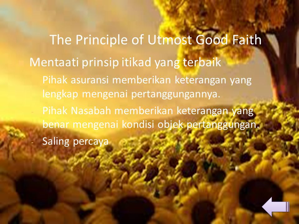 The Principle of Utmost Good Faith  Mentaati prinsip itikad yang terbaik - Pihak asuransi memberikan keterangan yang lengkap mengenai pertanggungannya.