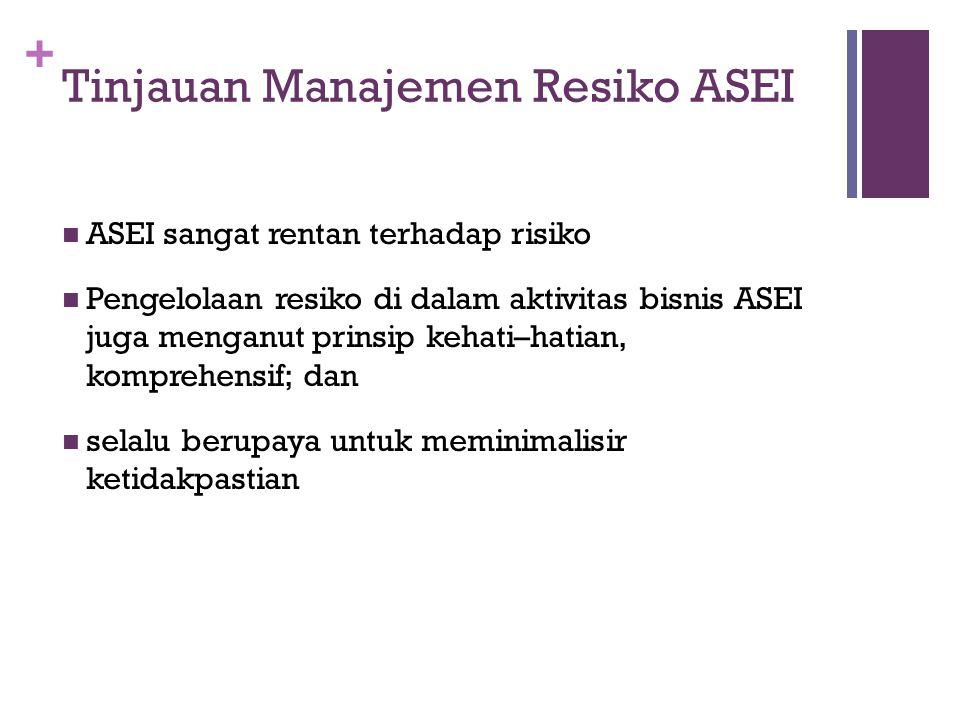 + Tinjauan Manajemen Resiko ASEI  ASEI sangat rentan terhadap risiko  Pengelolaan resiko di dalam aktivitas bisnis ASEI juga menganut prinsip kehati