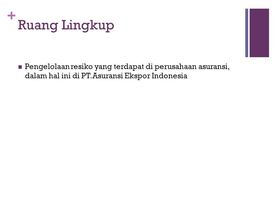 + Ruang Lingkup  Pengelolaan resiko yang terdapat di perusahaan asuransi, dalam hal ini di PT.Asuransi Ekspor Indonesia