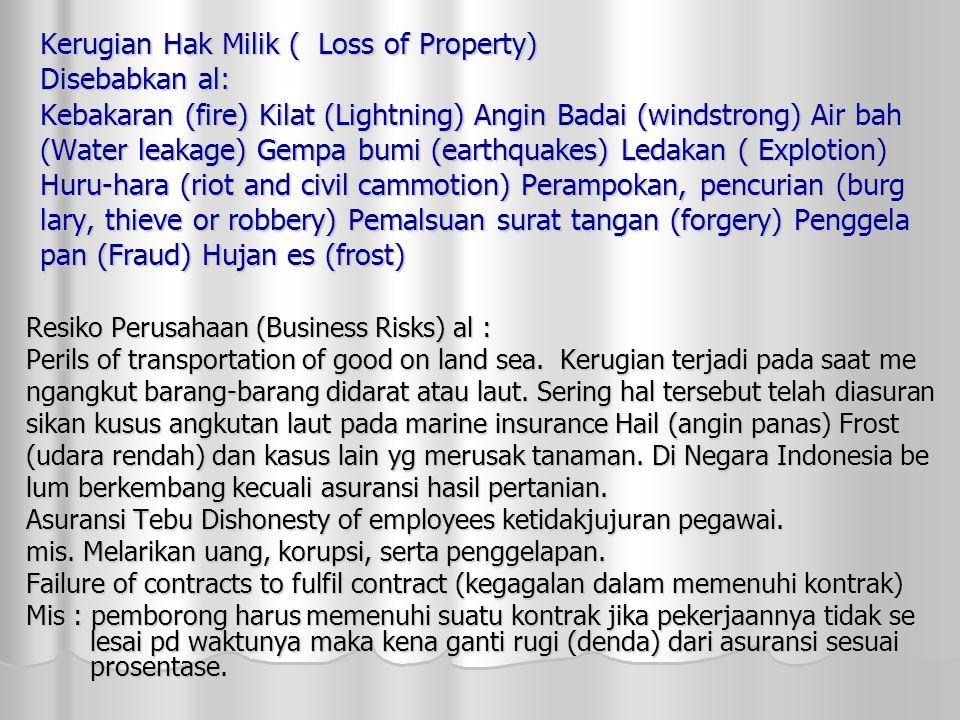 Kerugian Hak Milik ( Loss of Property) Disebabkan al: Kebakaran (fire) Kilat (Lightning) Angin Badai (windstrong) Air bah (Water leakage) Gempa bumi (earthquakes) Ledakan ( Explotion) Huru-hara (riot and civil cammotion) Perampokan, pencurian (burg lary, thieve or robbery) Pemalsuan surat tangan (forgery) Penggela pan (Fraud) Hujan es (frost) Resiko Perusahaan (Business Risks) al : Perils of transportation of good on land sea.
