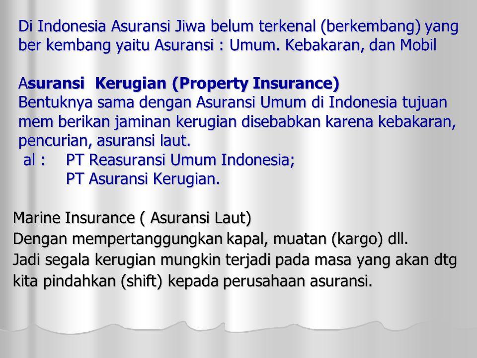Di Indonesia Asuransi Jiwa belum terkenal (berkembang) yang ber kembang yaitu Asuransi : Umum.