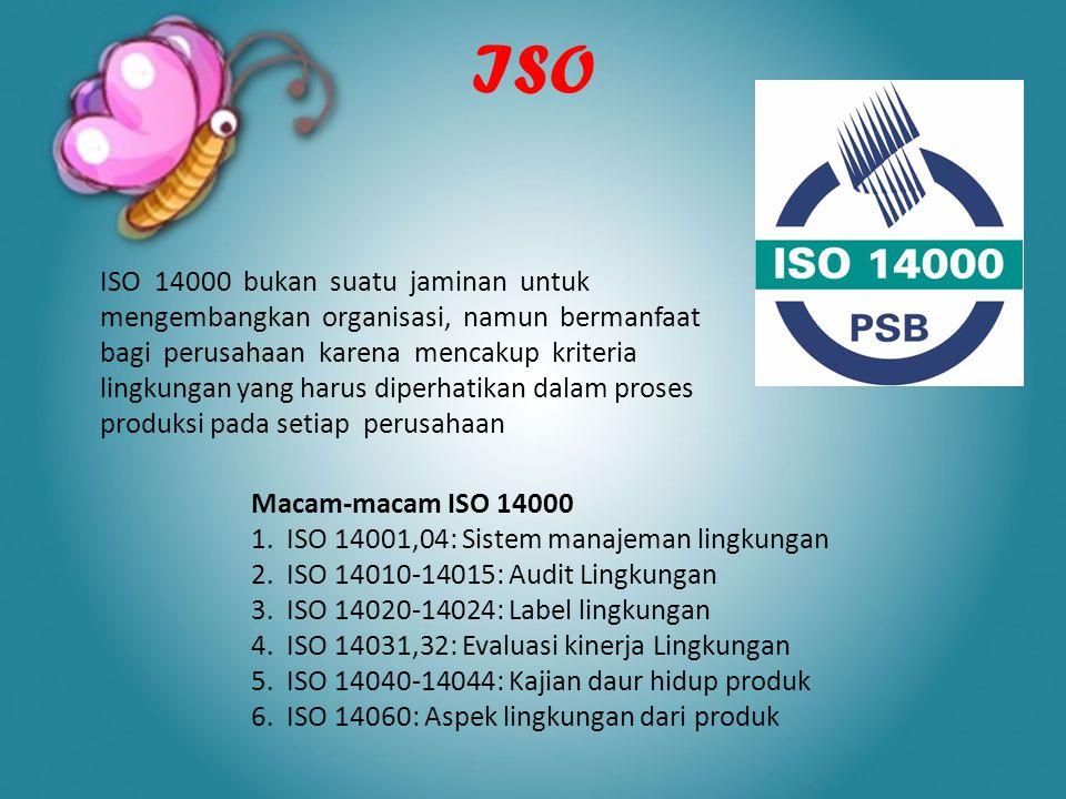 ISO ISO 14000 bukan suatu jaminan untuk mengembangkan organisasi, namun bermanfaat bagi perusahaan karena mencakup kriteria lingkungan yang harus dipe