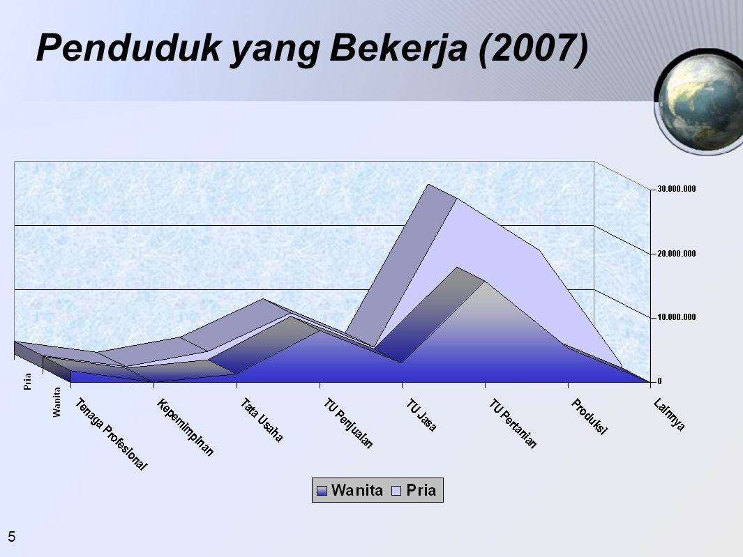 5 Penduduk yang Bekerja (2007)