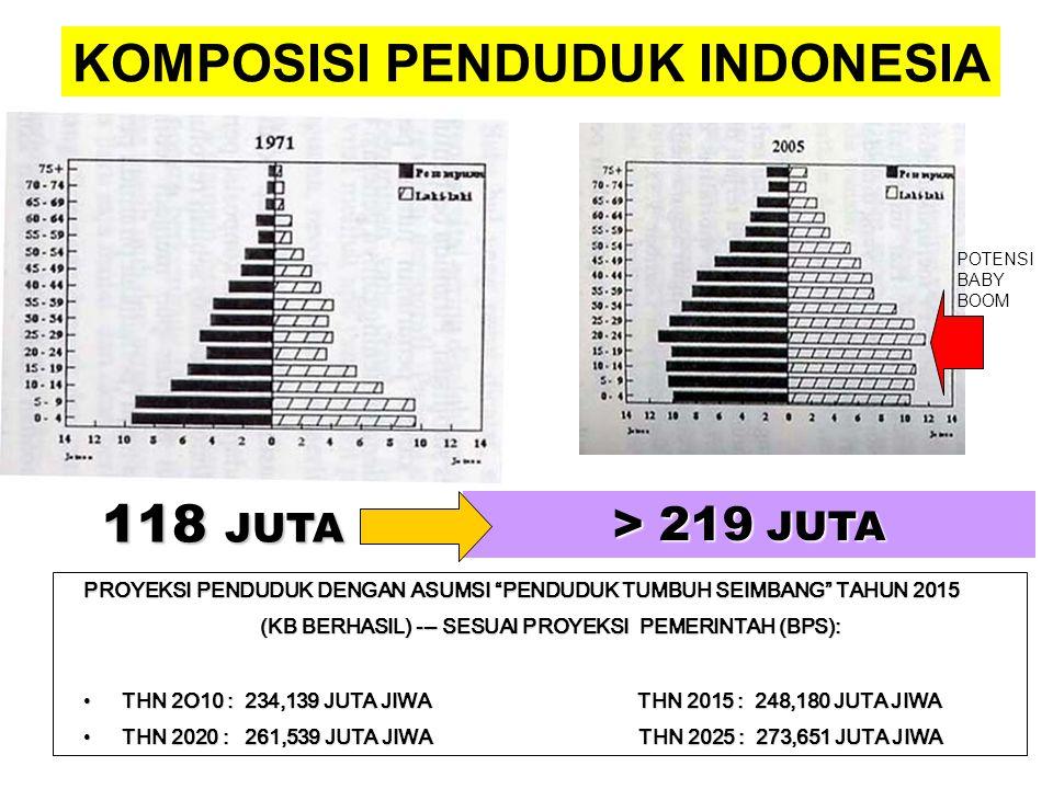 KOMPOSISI PENDUDUK INDONESIA 118 JUTA > 219 JUTA PROYEKSI PENDUDUK DENGAN ASUMSI PENDUDUK TUMBUH SEIMBANG TAHUN 2015 (KB BERHASIL) --- SESUAI PROYEKSI PEMERINTAH (BPS): •THN 2O10 : 234,139 JUTA JIWA THN 2015 : 248,180 JUTA JIWA •THN 2020 : 261,539 JUTA JIWA THN 2025 : 273,651 JUTA JIWA POTENSI BABY BOOM