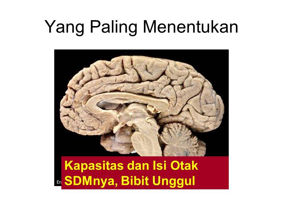 Yang Paling Menentukan Kapasitas dan Isi Otak SDMnya, Bibit Unggul
