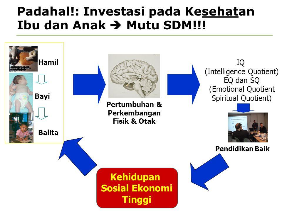 Padahal!: Investasi pada Kesehatan Ibu dan Anak  Mutu SDM!!! Pertumbuhan & Perkembangan Fisik & Otak IQ (Intelligence Quotient) EQ dan SQ (Emotional