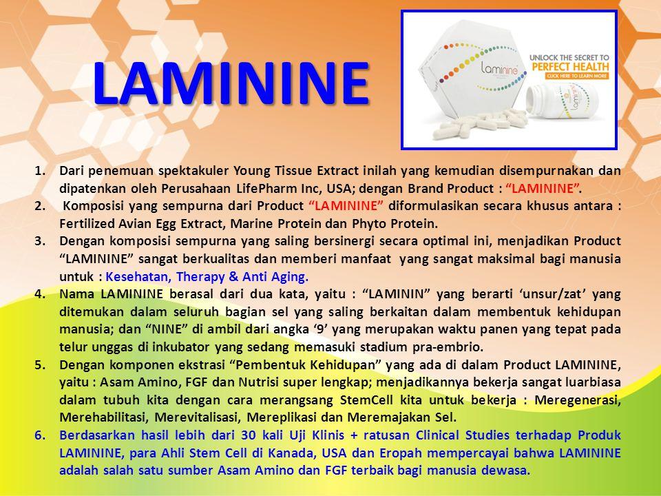 LAMININE 1.Dari penemuan spektakuler Young Tissue Extract inilah yang kemudian disempurnakan dan dipatenkan oleh Perusahaan LifePharm Inc, USA; dengan
