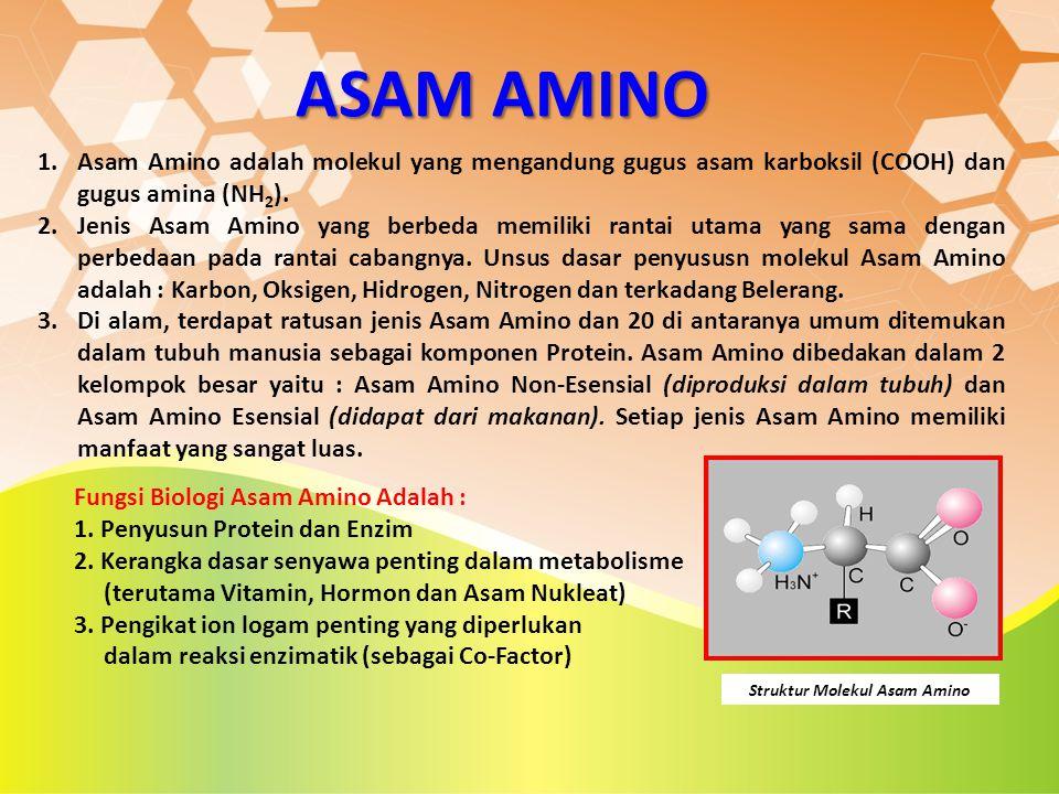 ASAM AMINO 1.Asam Amino adalah molekul yang mengandung gugus asam karboksil (COOH) dan gugus amina (NH 2 ). 2.Jenis Asam Amino yang berbeda memiliki r
