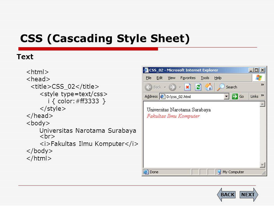 CSS (Cascading Style Sheet) Text CSS_02 i { color:#ff3333 } Universitas Narotama Surabaya Fakultas Ilmu Komputer NEXTBACK
