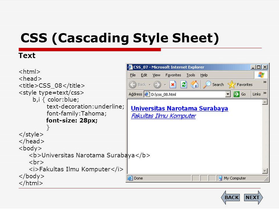 CSS (Cascading Style Sheet) Text CSS_08 b,i { color:blue; text-decoration:underline; font-family:Tahoma; font-size: 28px; } Universitas Narotama Surab