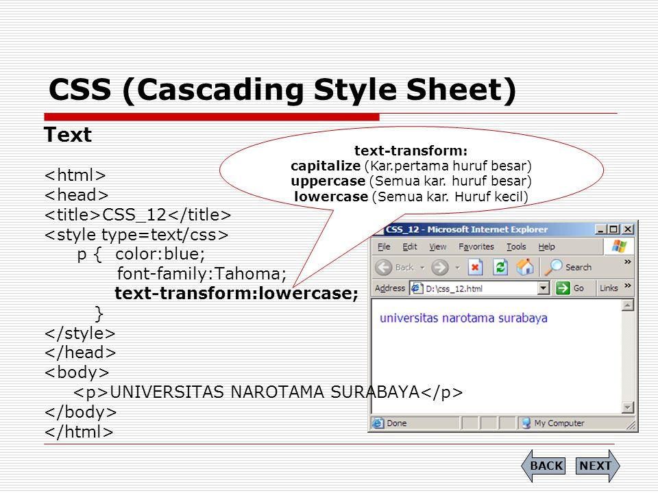 CSS (Cascading Style Sheet) Text CSS_12 p { color:blue; font-family:Tahoma; text-transform:lowercase; } UNIVERSITAS NAROTAMA SURABAYA NEXTBACK text-tr