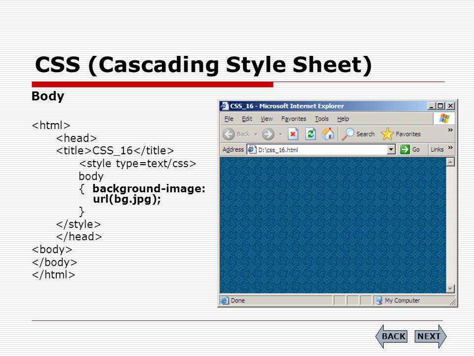 CSS (Cascading Style Sheet) Body CSS_16 body { background-image: url(bg.jpg); } NEXTBACK