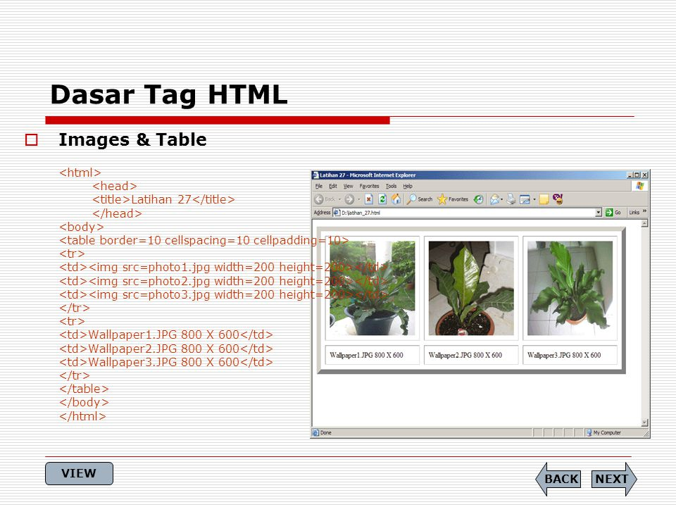 Dasar Tag HTML  Images & Table Latihan 27 Wallpaper1.JPG 800 X 600 Wallpaper2.JPG 800 X 600 Wallpaper3.JPG 800 X 600 NEXTBACK VIEW