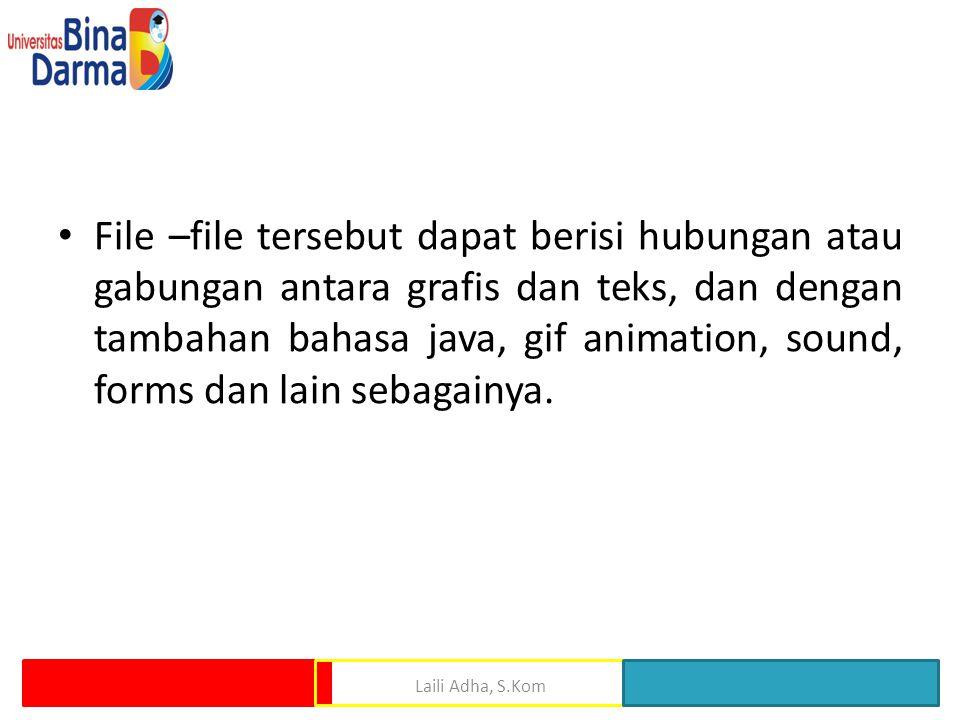 • File –file tersebut dapat berisi hubungan atau gabungan antara grafis dan teks, dan dengan tambahan bahasa java, gif animation, sound, forms dan lain sebagainya.