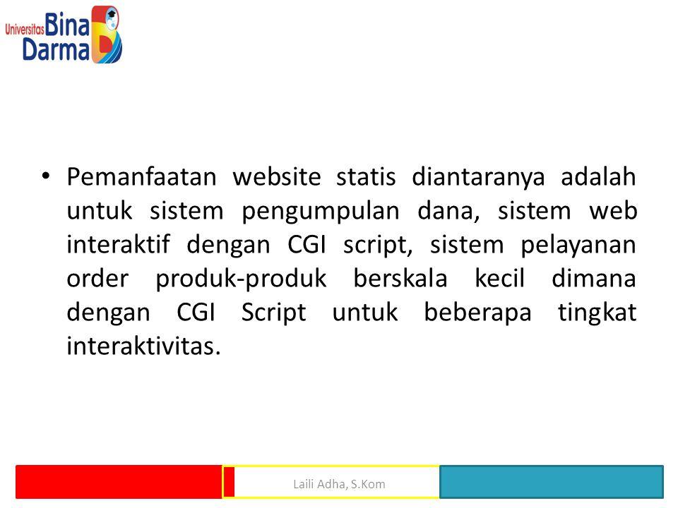 • Pemanfaatan website statis diantaranya adalah untuk sistem pengumpulan dana, sistem web interaktif dengan CGI script, sistem pelayanan order produk-produk berskala kecil dimana dengan CGI Script untuk beberapa tingkat interaktivitas.