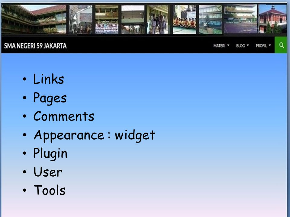 • Links • Pages • Comments • Appearance : widget • Plugin • User • Tools
