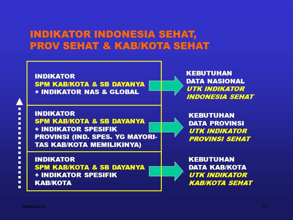 23 KEBUTUHAN DATA NASIONAL UTK INDIKATOR INDONESIA SEHAT KEBUTUHAN DATA PROVINSI UTK INDIKATOR PROVINSI SEHAT KEBUTUHAN DATA KAB/KOTA UTK INDIKATOR KA