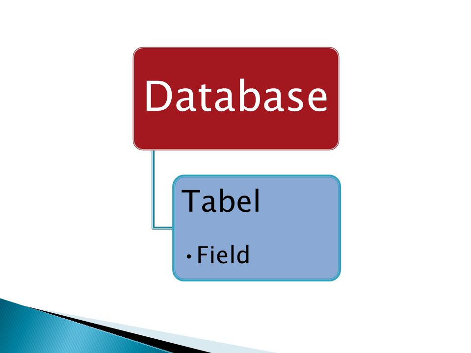 Database Tabel •Field
