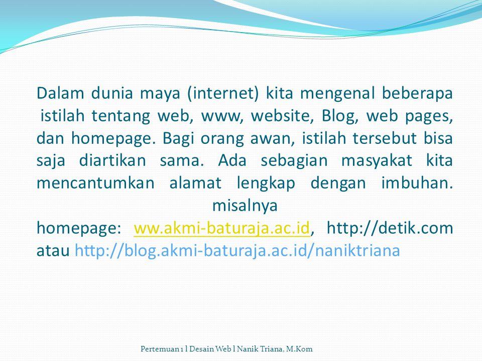 Dalam dunia maya (internet) kita mengenal beberapa istilah tentang web, www, website, Blog, web pages, dan homepage.