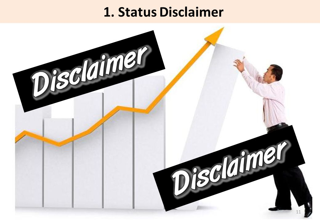 1. Status Disclaimer 11