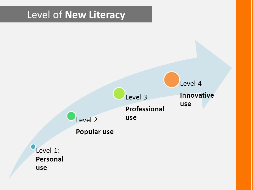 Level of New Literacy Level 1: Personal use Level 2 Popular use Level 3 Professional use Level 4 Innovative use