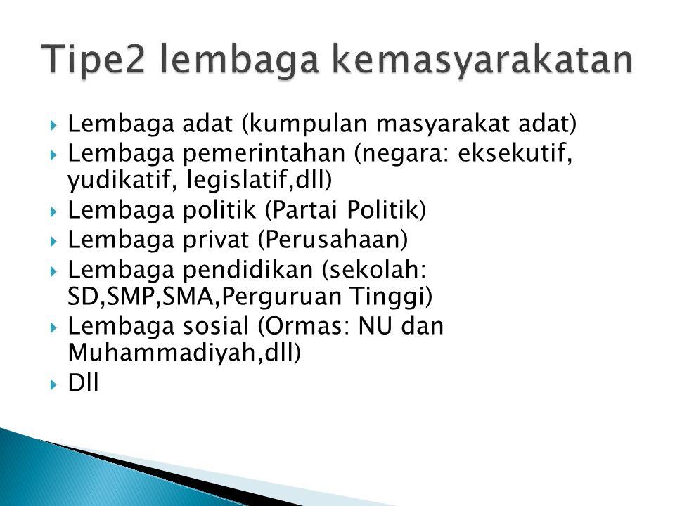  Lembaga adat (kumpulan masyarakat adat)  Lembaga pemerintahan (negara: eksekutif, yudikatif, legislatif,dll)  Lembaga politik (Partai Politik)  L