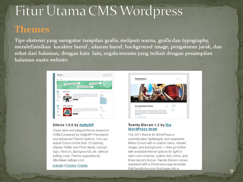 Themes Tipe ekstensi yang mengatur tampilan grafis, meliputi warna, grafis dan typography, mendefinisikan karakter huruf, ukuran huruf, background image, pengaturan jarak, dan sekat dari halaman, dengan kata lain, segala sesuatu yang terkait dengan penampilan halaman suatu website.