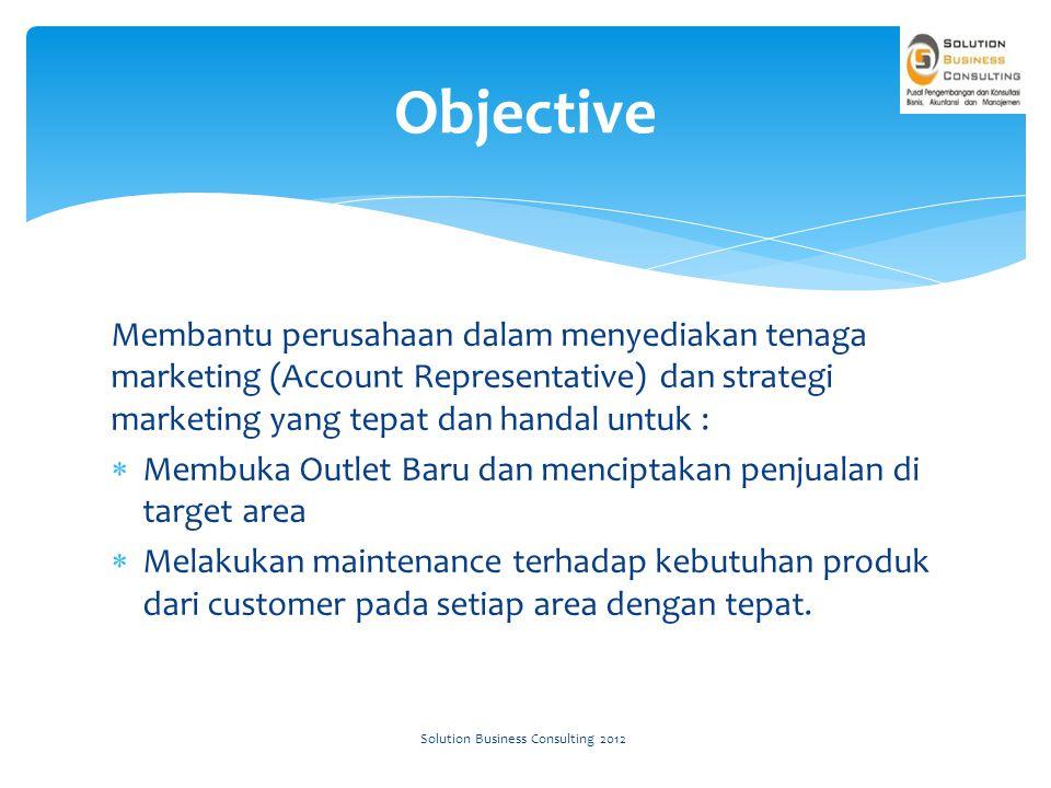 Regional Area 1Area 2Area 3Area 4 Target Area Solution Business Consulting 2012
