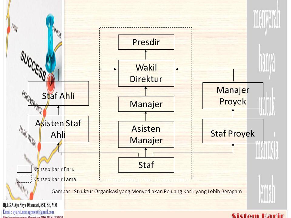 Konsep Karir Baru Konsep Karir Lama Gambar : Struktur Organisasi yang Menyediakan Peluang Karir yang Lebih Beragam Presdir Wakil Direktur Manajer Asis
