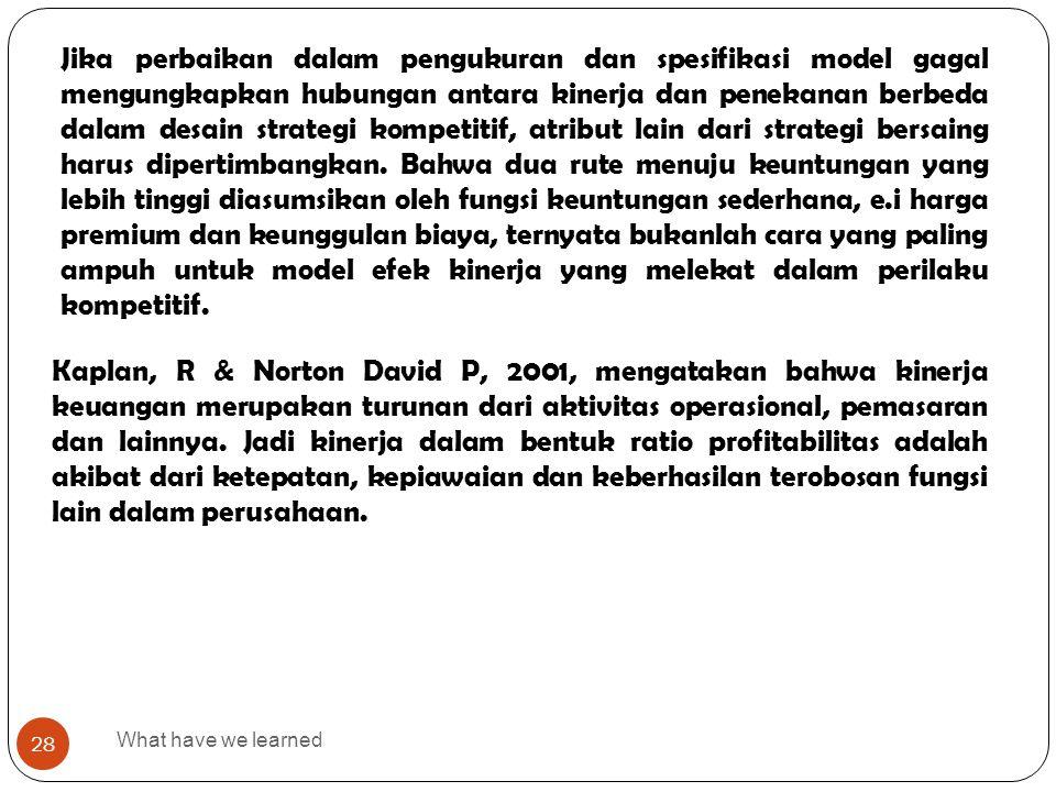 What have we learned 28 Jika perbaikan dalam pengukuran dan spesifikasi model gagal mengungkapkan hubungan antara kinerja dan penekanan berbeda dalam